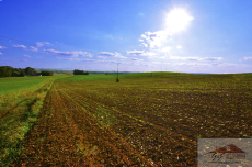 Land for sale with the area of 8300 m2